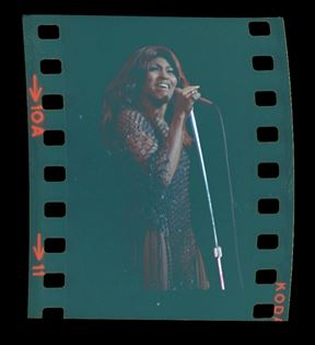 Tina Turner (Peter Warrack)