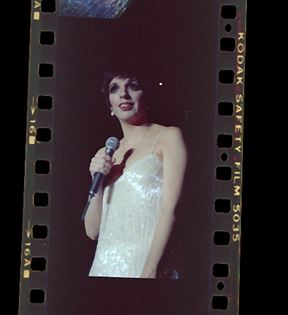Liza Minnelli (Peter Warrack)