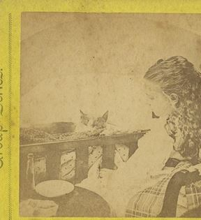 19th Century Child and Cat