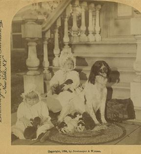 19th Century Children and Pets