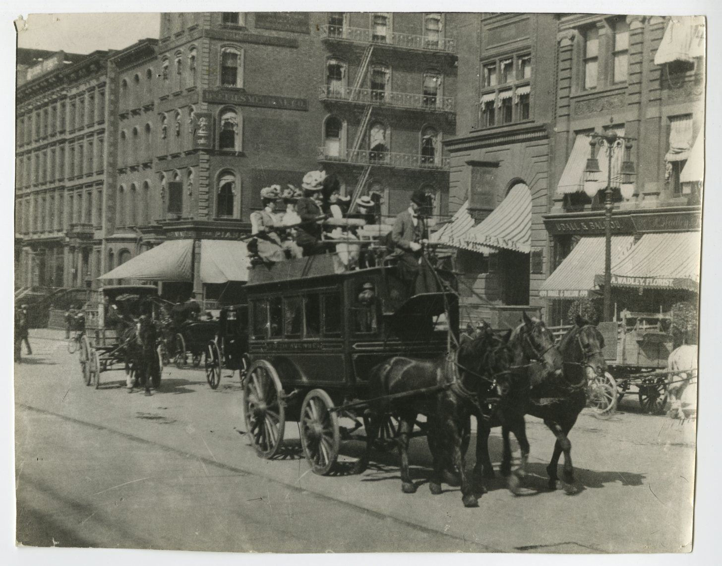 5th Avenue New York Stagecoach